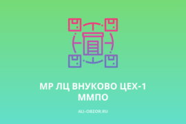 МР ЛЦ ВНУКОВО ЦЕХ-1 ММПО